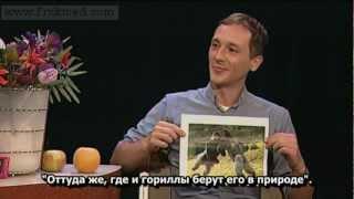 Русский Фруктоед на TV в Нью-Йорке. Интервью сыроеда.