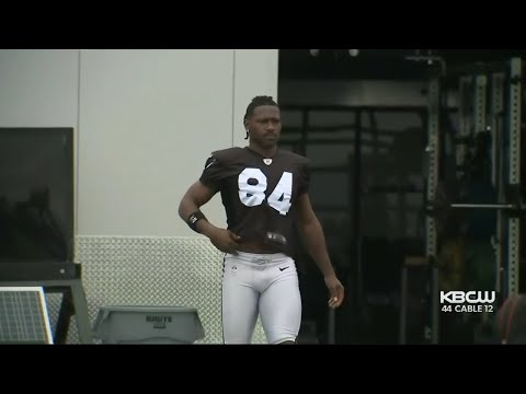 Antonio Brown Sued By Woman Claiming He Raped, Sexually Assaulted Her
