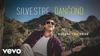 Silvestre Dangond - Niégame Tres Veces (Cover Audio)