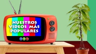 "Axe Bahía ""Onda Onda"" - Videomatch"