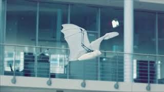 В Германии создали бионическую летучую лисицу. Зачем? Смотрите