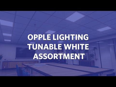 OPPLE Lighting Tunable White Assortment
