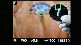 Nikon D3300 Review: Continuous Auto-Focus performance