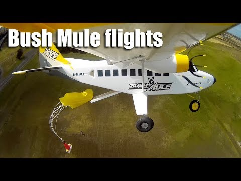avios-bush-mule-flights