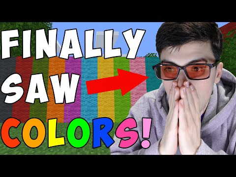 Minecraft, But I'm Not Colorblind Anymore...
