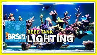 Week 18: Aquarium Lighting: Replicating the sun over the world's reefs | 52 Weeks of Reefing #BRS160
