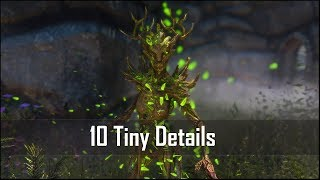 Skyrim: Yet Another 10 Tiny Details That You May Still Have Missed in The Elder Scrolls 5 (Part 8)