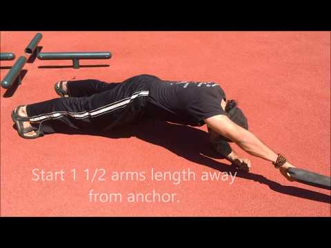 Sled Side Leg Hip Raise (ab coaster)