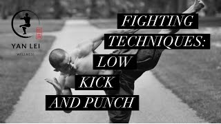 Fighting Techniques: Low Kick and Punch