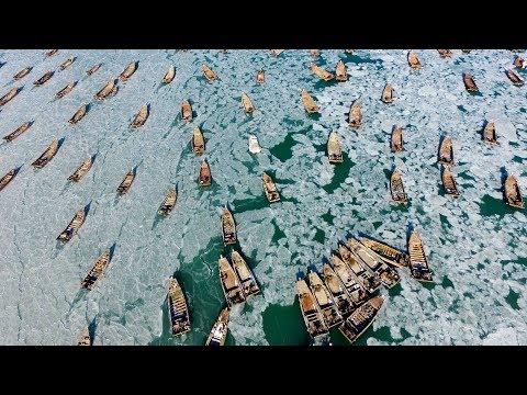Желтое море замерзло
