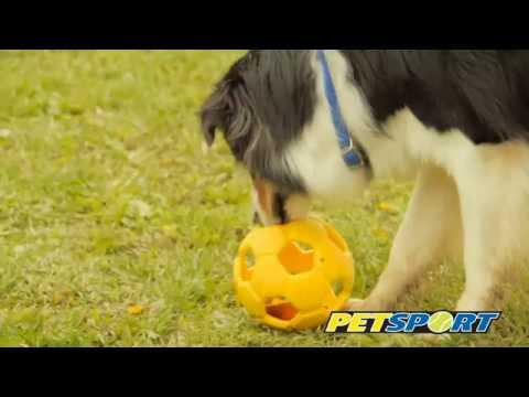Turbo Kick Soccer Hundeball
