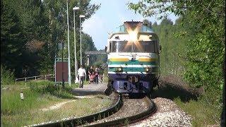 Дизель-поезд ДР1А-252 на о.п. Саку / DR1A-252 DMU at Saku stop