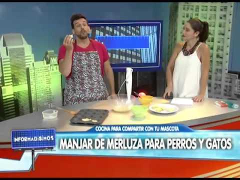 CHEF CANINO  OCTAVIO PASIK  MANJAR DE MERLUZA PARA PERROS Y GATOS