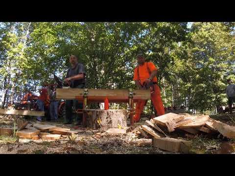 MIchigan Sept 15th Stihl 026 pipe vs  Husky 346xp