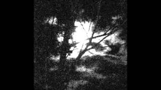 Lightless - In a Cold Grave