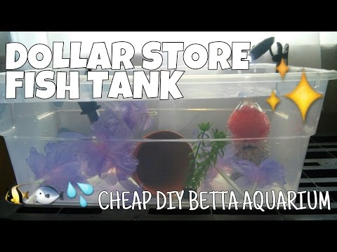 DOLLAR STORE FISH TANK - How to Make a Complete Betta Aquarium for Less Than $15
