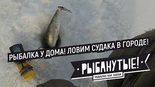 Зимняя рыбалка в новосибирская область