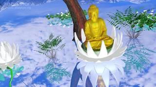 Мантра просветления. Mantra of Enlightenment