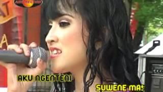 Download lagu Rina Amelia Ojo Suwe Suwe Mp3