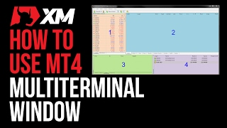 MT4 Multi-terminal Window Basics - MT4 Tutorials - XM