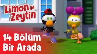 Limon ile Zeytin - Yeni Bölümler - 14 Bölüm Bir Arada | Çizgi Film