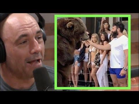Joe Rogan Reacts to Dan Bilzerian Feeding a Bear