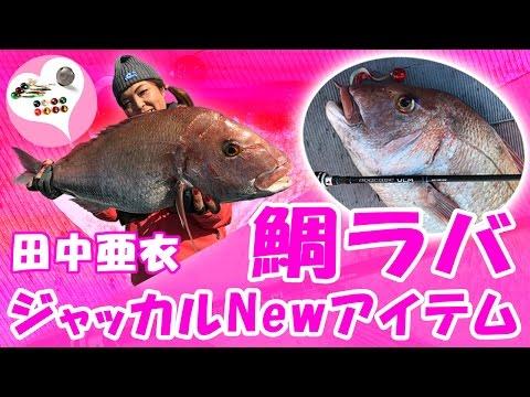 """【鯛ラバ】 """"2017年 Newアイテムで大鯛ゲット"""" / 田中亜衣 ・ジャッカル"""