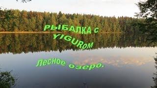 Рыбалка на озере лесном-сергиева посада