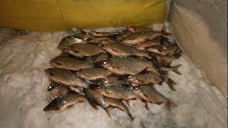 Финский залив отчет о рыбалке