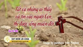Suy Niệm Lời Chúa, Thứ Tư 08052019