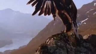 Impresionante!! Japon, Chile Y Haiti En Vivo!! No Visto En Tv Y, Reflexion Es El Fin?