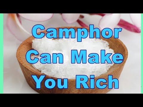 Camphor at Best Price in India