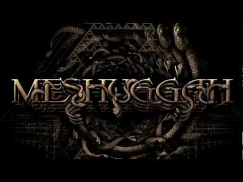 MESHUGGAH - Do Not Look Down (OFFICIAL LYRIC VIDEO) online metal music video by MESHUGGAH