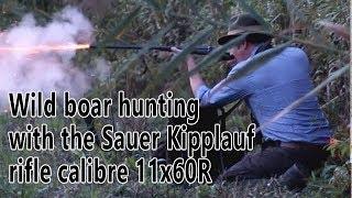 Hunting Wild Boar With The 19th Century 11x60R Sauer & Sohn Kipplauf Rifle