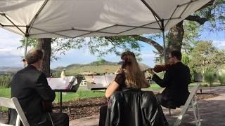 A Lyric Ensemble - Disney Song Wedding