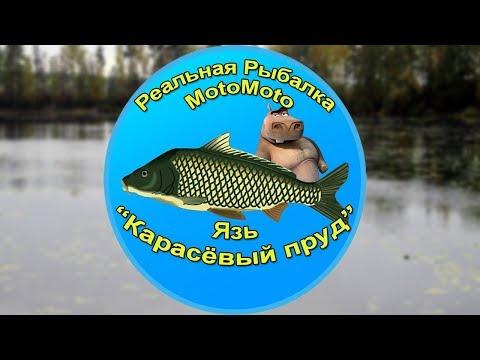 Как поймать Язя на Карасёвом пруду [АРХИВ] | Реальная Рыбалка