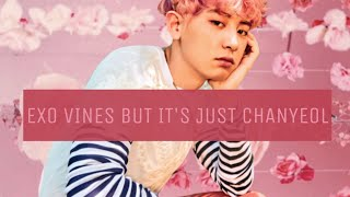 EXO vines but it's just Chanyeol pt.2