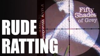 Fieldsports Britain – Saucy airgun pellet test + fox shooting + new guns (episode 179)