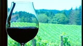 The Art of Blending Wines: From Barrel to Bottle