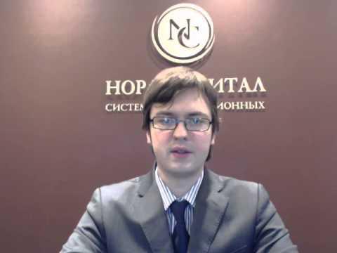 Сергей Алин в программе «Вести: Экономика» 18.01.2013