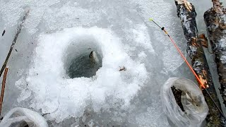 Рыбалка хариус из подо льда