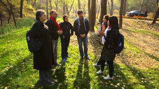 Forest Restoration to Help Beijing´s Water Crisis