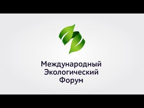 Международный экологический форум в Уфе, интервью с Ангелиной Давыдовой