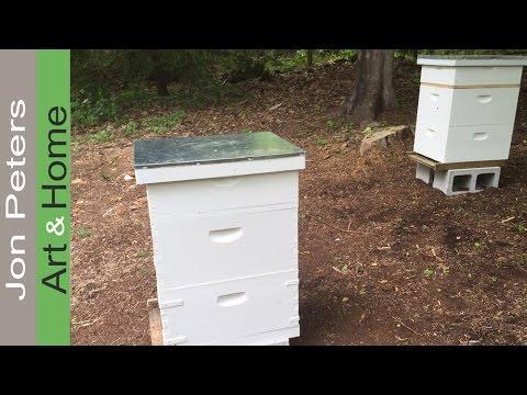 , title : 'Beekeeping for Beginners - Langstroth Bee Hives.