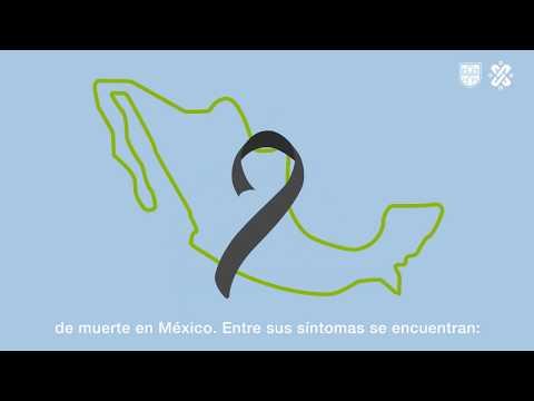 Secretaría De Salud De La Ciudad De México