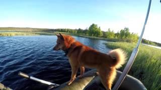 Рыбалка на озере чем мурманской области