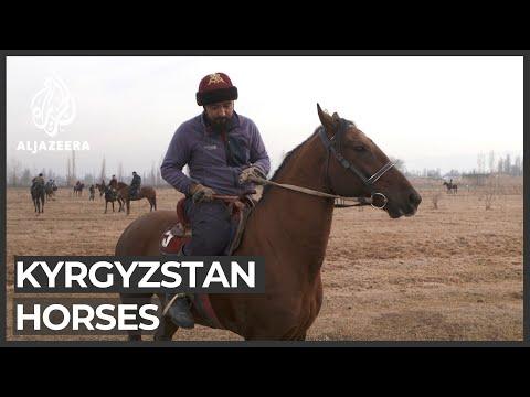 Horses: A cultural symbol in Kyrgyzstan
