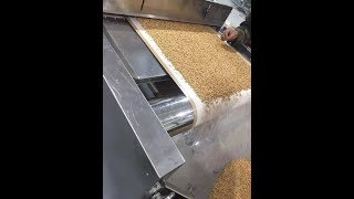 Continuous Sesame Seed Roasting Machine, Seeds Roaster, Grain Sterilizer youtube video