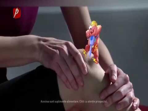 Tipurile de articulații și tratamentul acestora