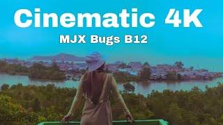 Cafe dan Villa Ditolitoli Bernuansa Mangrove   Drone MJX Bugs B12